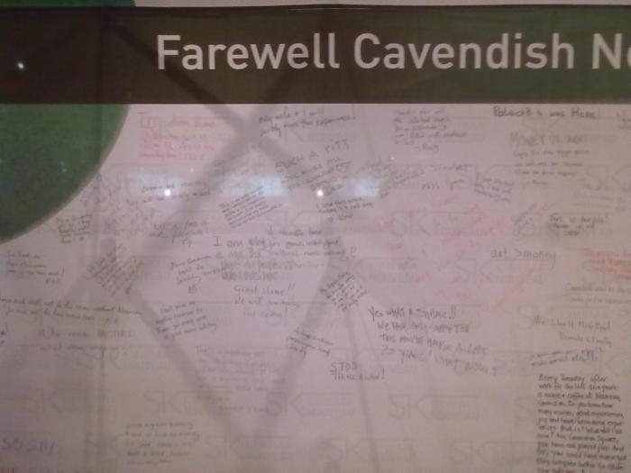 Cavendish Nouveau 02